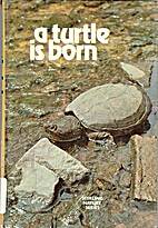 A turtle is born by William White