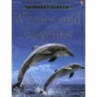 Whales and Dolphins (Usborne Discovery) by…