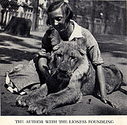 Autoren-Bild. Soviet children's literature writer, naturalist Vera Chaplina (1908 – 1994) with lioness Kinuli at the Moscow Zoo, summer 1936.
