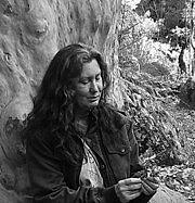 Fotografia de autor. Bomaderry Creek, 2013