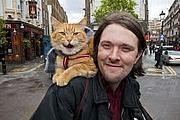 Kirjailijan kuva. Author 1: James Bowen and his former streetcat Bob.