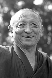 "Autoren-Bild. Chökyi Nyima Rinpoche By Mikktamme - Own work, CC BY-SA 4.0, <a href=""https://commons.wikimedia.org/w/index.php?curid=68576043"" rel=""nofollow"" target=""_top"">https://commons.wikimedia.org/w/index.php?curid=68576043</a>"