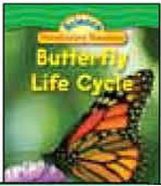 Butterfly Life Cycle por Jeff Bauer