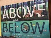 Above and Below de Patricia Hegarty and…