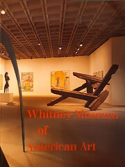 Whitney Museum of American Art by Patterson…