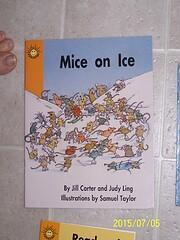 Mice on Ice (Language Skills, Level 1 Word -…