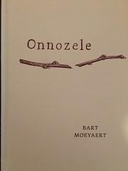 Onnozele av Bart Moeyaert