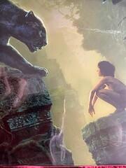 The Jungle Book [Blu-ray 3D] [2016] [Region…