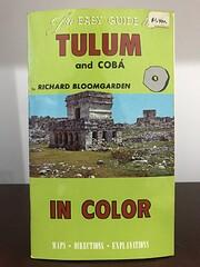 The Easy Guide to Tulum and Cobá por…