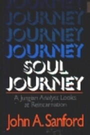 Soul Journey: A Jungian Analyst Looks at…