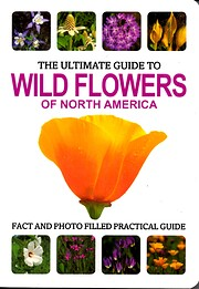 The Ultimate Guide to Wildflowers of North…