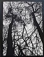 Idyll. Orchard Volume Three. by Raymond…