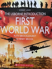 The Usborne Introduction to the First World…