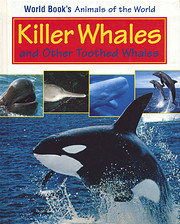 Killer Whales and Other Toothed Whales…