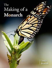 The making of a monarch by Linda Shmith