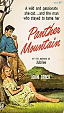 Panther Mountain