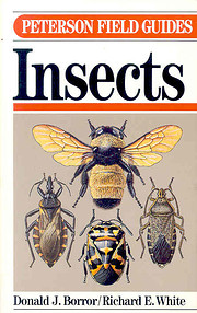 A Field Guide to Insects of America North of…