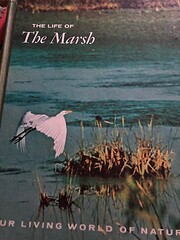The Life of the Marsh af William A. Niering