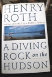 A Diving Rock on the Hudson (Mercy of a Rude…