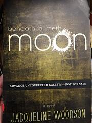 Beneath a Meth Moon von Jacqueline Woodson