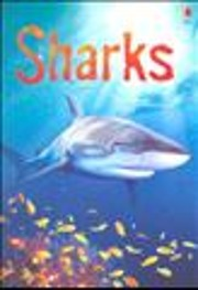 Sharks av Cartiona Clarke