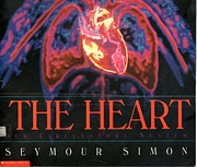The Heart Our Circulation System