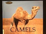 Camels af Jenny Markert