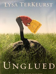Unglued: Making Wise Choices in the Midst of…