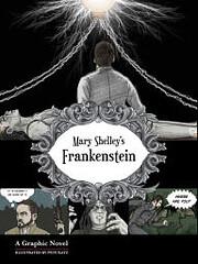Frankenstein: a Graphic Horror Novel –…