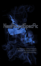 NewFoundSpecFic Volume 1 by Various Authors