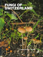 Fungi of Switzerland, Volume 4 : Agarics,…