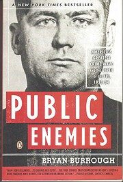 Public enemies de Bryan Burrough