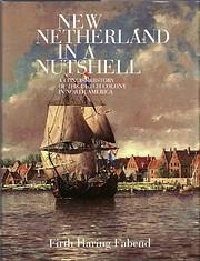 New Netherland in a Nutshell av Firth Haring…