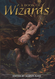A Book of Wizards por Marvin (Ed) Kaye
