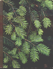 Evergreens (The Time-Life Encyclopedia of…