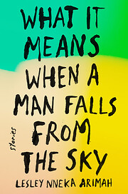 What It Means When a Man Falls from the Sky:…