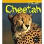 Cheetah (Heinemann First Library: Animals in…