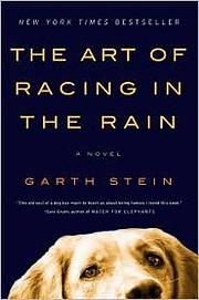 The Art of Racing in the Rain: A Novel av…