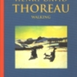henry david thoreau walking essay summary Walking henry david thoreau essay - fortressmarineghanacomaejhatuybozpumqyq where did you go to university moving to a new country essay the original plan was to ha  narsil and anduril comparison essaythoreau's walking - with annotated text - eserverby henry david thoreau - 1862 'walking' is a lyrical, meandering essay on the value.