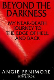 Beyond the Darkness de Angie Fenimore